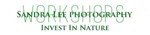 Sandy Zelasko Logo