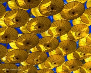Umbrellas on ceiling