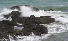 SurfPacificShore