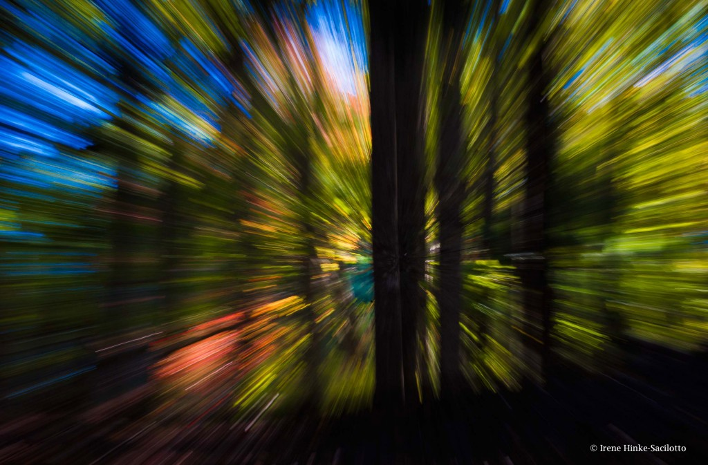 Photographed at GrandviewUsed zoom lens at slow shutter speed.