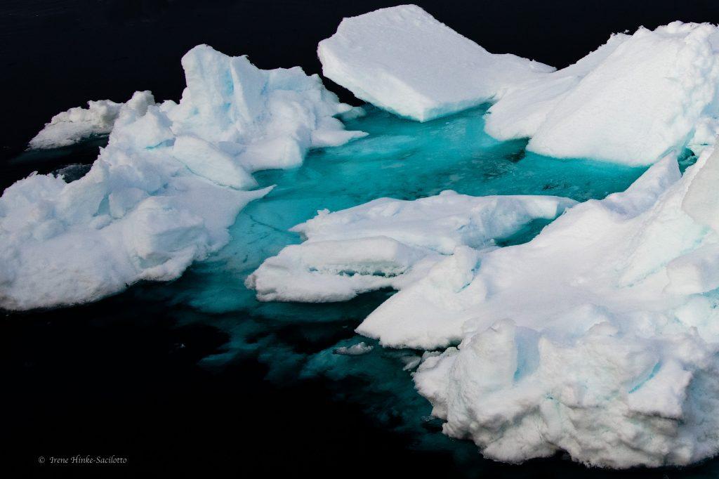 Iceberg from ship
